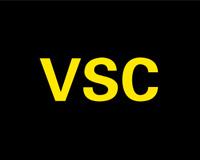 VSC指示灯图标