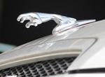 豹子标志是什么车品牌 像劳斯莱斯一样拥有立标
